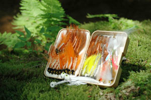 Fresh water fly selection