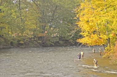 Fly fishing the Salmon River